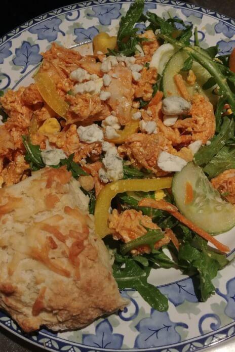 Amazing Buffalo Chicken Weight Watchers Recipe